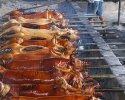 lechon-pigs-roasting